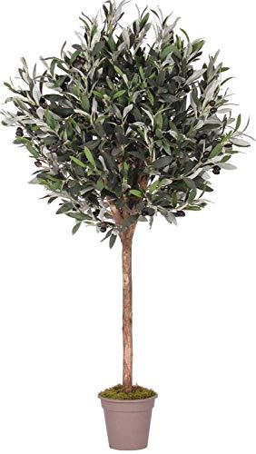 Olivo Ball con frutas – Árbol artificial de decoración interior con troncos auténticos –...