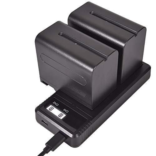 DSTE NP-F970 - Batería recargable (2 unidades) y Smart LED Dual USB cargador compatible con Sony CCD-SC5, CCD-SC5/E, CCD-SC55E, CCD-SC55, CCD-SC6, CCD-SC65, CCD-SC7