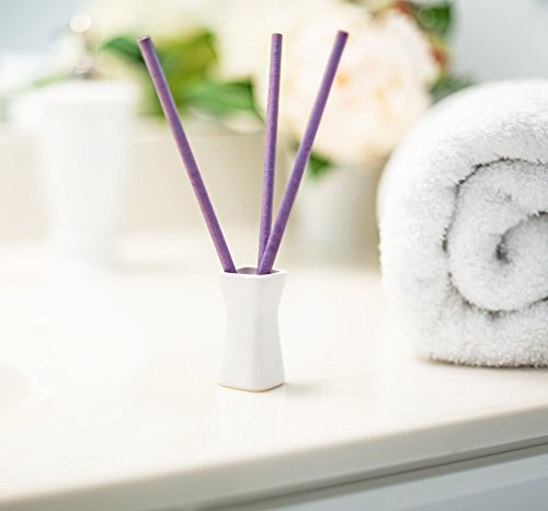 Enviroscent Bed and Bath Aroma Diffusers, Paradise Breeze Fragrance