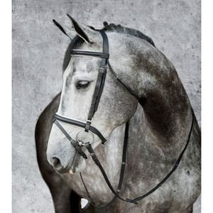 Suffolk by Dover Saddlery Dressage Bridle - Black/White, Horse-F/S