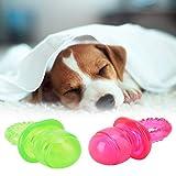 idalinya Juguetes de Dientes molares para Perros, Juguetes de Dientes,...