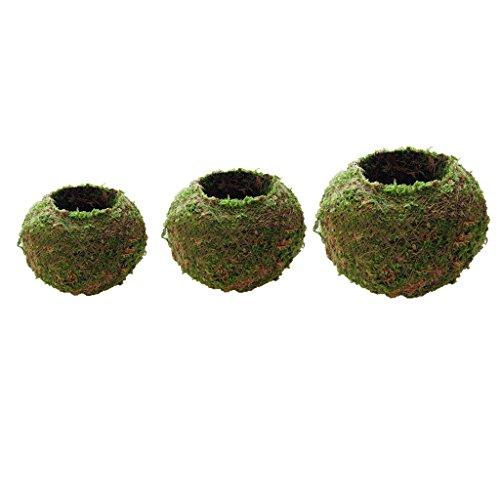 MagiDeal Lot de 3X Vases Mousse Pot Fleur Jardinage Décoration de Maison Fenetre