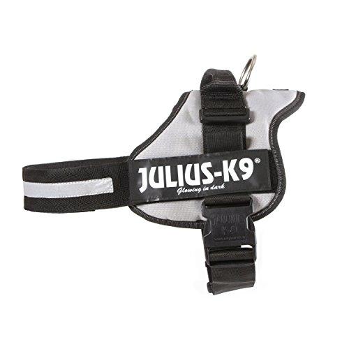 Julius-K9 Powerharness, 1, Silver