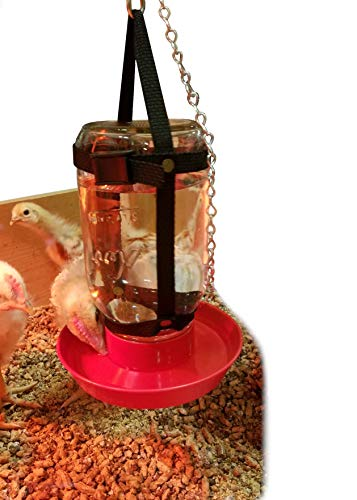 Your Happy Chicks 1 Qt. Hanging Harness (Adjustable, Glass or Plastic Jars)