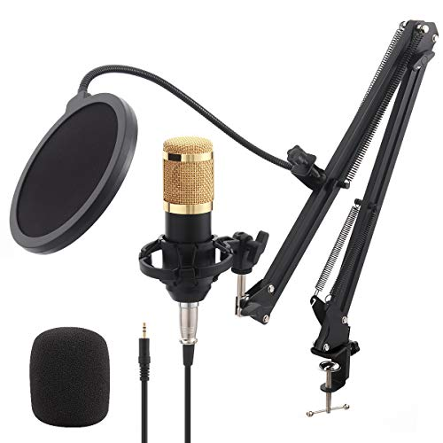 Global-store BM800 Condenser Microphone Kit, XLR Studio Podcast Microphone with Adjustable Mic Suspension Scissor Arm, Shock Mount & Pop Filter for Streaming Recording YouTube Game Voice Over ASMR