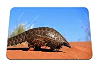 22cmx18cm マウスパッド (アルマジロ砂クロール) パターンカスタムの マウスパッド