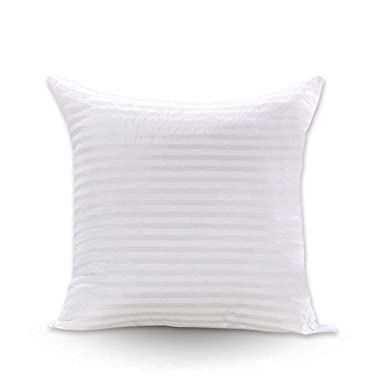 FabricMCC Square Pillow Inserts 18x18, Poly White Sham Hypoallergenic Stuffer Pillow Insert Form