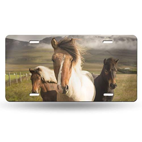 Doinh Paard Op De Prairie License Plate Gepersonaliseerde Eenzijdige Afdrukken Rechthoekige Licentie PlateAluminum Novelty License Plates12x6inch
