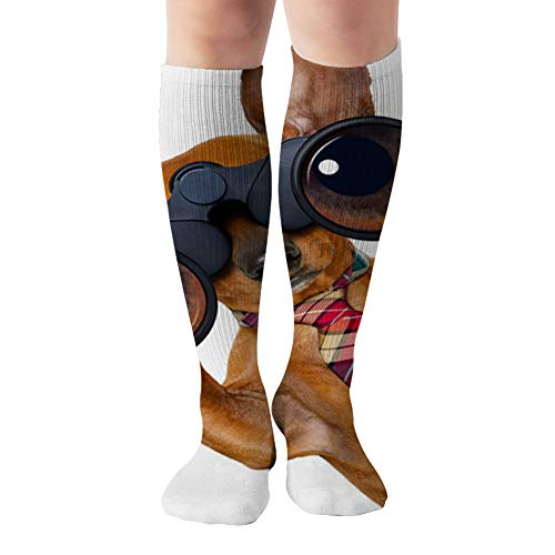Dachshund Sausage Dog Binoculars Searching Looking Business Finance Compression Socks Women And Men,Best For Nurses,Travel,Pregnancy,19.68 Inch