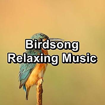 Birdsong Relaxing Music