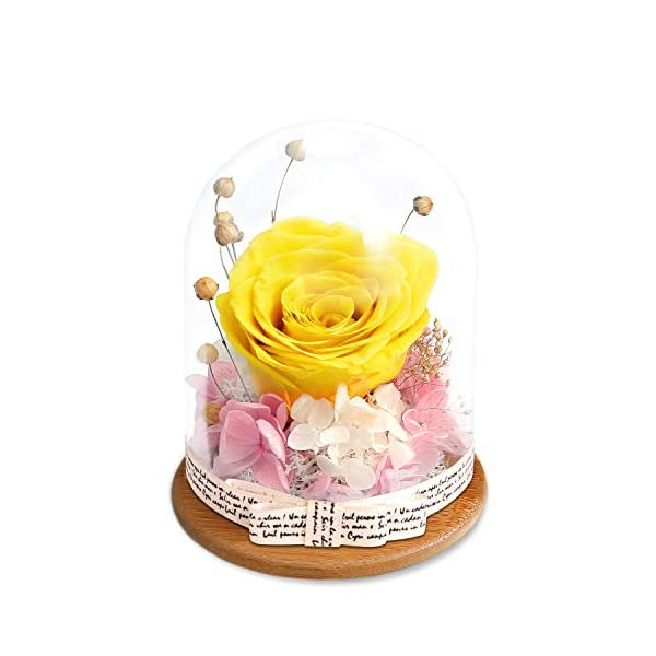 KING DOO Forever Rose in Glass Dome – Eternal Handmade Flowers Galaxy Roses idea Gifts for Women or Friend or Family on Christmas Valentine's Day Birthday Anniversary Mother's Day