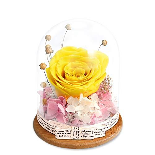 King Doo - Rosas artificiales hechas a mano para el día de San Valentín, cumpleaños, aniversario, Navidad (oro amarillo)
