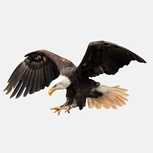 GWCU Auto-Aufkleber Hochwertige Autoaufkleber fliegen Adler Aufkleber reflektierende wasserdichte Sonnencreme PVC Zubehör Dekoration 17cm * 9cm