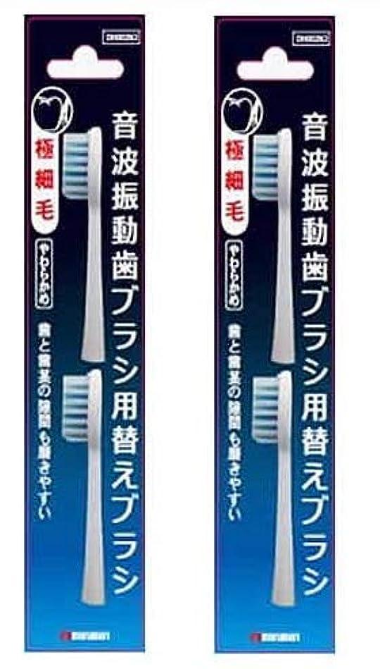 苦痛真鍮貴重なマルマン 電動歯ブラシ ミニモ/プロソニック1/プロソニック2/プロソニック3 対応 替えブラシ 極細毛 2本組 DK002N2 (2)