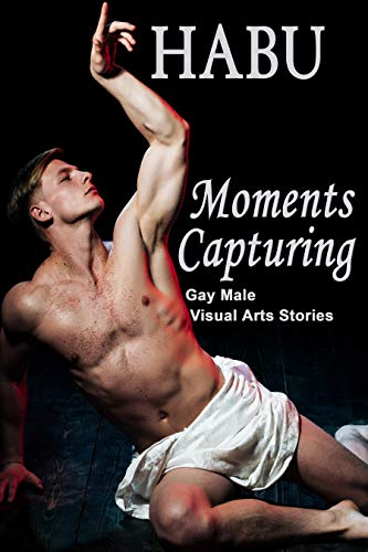 Moments Capturing: Gay Male Visual Arts Stories (Themed Erotica Anthologies Book 6) (English Edition)