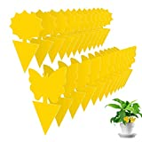 Indoor Fruit Fly Traps 24 Pack, Sticky Gnat Traps Killer for House Plants, Insect Catcher for Mosquitoes, Fungus Gnats, White Flies, etc.