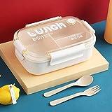 Zoom IMG-2 scatola bento porta pranzo per
