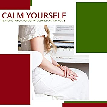 Calm Yourself - Peaceful Paino Chords For Deep Relaxation, Vol. 3