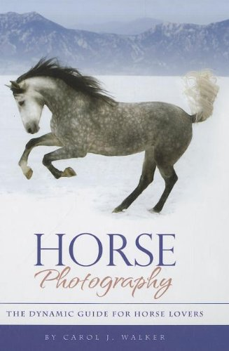 Horse Photography: The Dynamic Guide for Horse Lovers