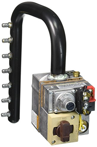 Zodiac R0496402 Propane Gas Manifold Assembly Replacement Jandy LRZM175...