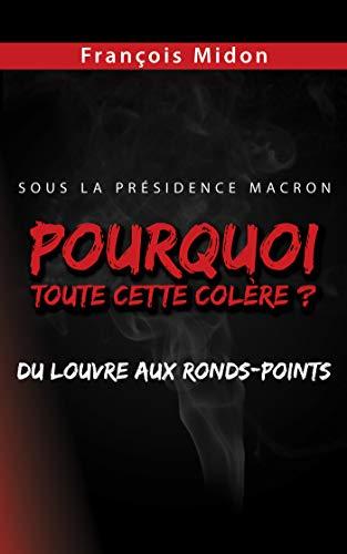 Pourquoi toute cette colère ?: Sous la Présidence Macron, du Louvre aux ronds-points