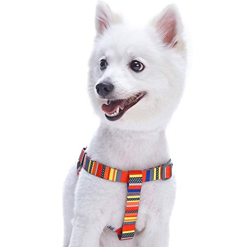 Blueberry Pet Step-in Nautical Flags Inspired Designer Dog Harness, Small