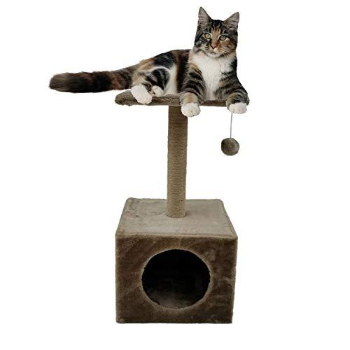 BRAVO Rascador para Gato. Árbol - Poste de Gatos para Jugar y arañar. Plataforma de Juegos de Entretenimiento para Gatos pequeños, medianos y Grandes. Dimensiones: 30 * 30 * 60cm