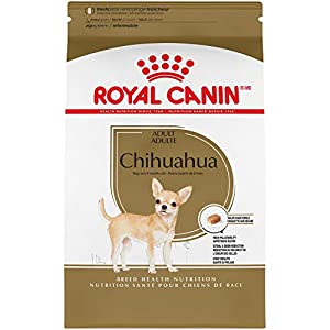Royal Canin Chihuahua Adult Breed Specific Dry Dog Food, 2.5 lb. Bag