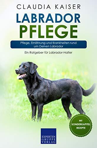 Labrador Pflege: Pflege, Ernährung und Krankheiten rund um Deinen Labrador (Labrador Band 3)