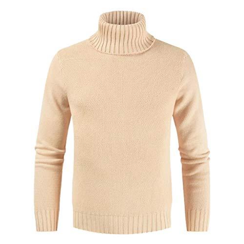 yazidan Herren Rollkragenpullover Feinstrick Langarmshirt Basic Regular Fit Pullover Einfarbig Freizeit Sweater Pulli