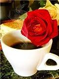 YWCXMY-LDL Diamond Pintura del Paisaje Taza de café de Diamante del Bordado de Flores de Cocina Mosaico del Diamante Cuadro De Diamantes de imitación de la Costura