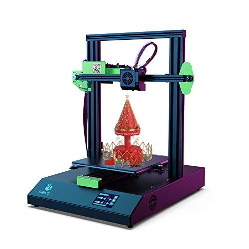 LABISTS Impresora 3D, Tamaño de Impresión 220 x 220 x 250mm, Impresora 3D de Alta Precisión con Pantalla Táctil, Detector de Filamento y Reanudación de Impresión