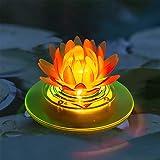pearlstar Solar Pond...image