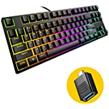 New Version TKL Compact Mechanical Gaming Keyboard, Hiwings HI100 RGB LED Rainbow Backlit 80% 87 Keys Keyboard with Blue Switches,Compatible Windows, Mac with Type C Adapter (Extra OTG)