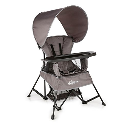 Baby Delight Go with Me Chair | ...