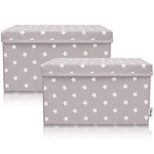 Lifeney 2-Set Aufbewahrungsbox Kinder (37x25x21cm) I Aufbewahrungskorb für Kinderzimmer und Wohnbereich I Kinder Aufbewahrungskiste (Hellgrau Stern)