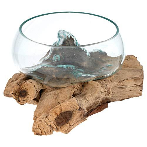 Nexos Handgemachte mundgeblasene Glasschale auf Wurzelholz Glasvase Dekoschale aus Glas Ø20cm ca. 30 x 25 x 15 cm Reine Handarbeit Gamal Teak Holz