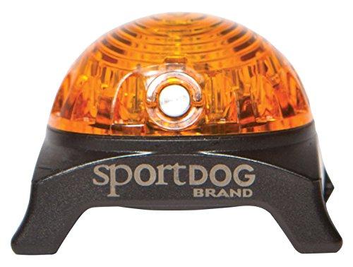 SportDOG Sicherheitsleuchte gelb, Leuchtanhänger für Halsband, Ortungsleuchte für Hunde, bis zu 250 Stunden Laufzeit