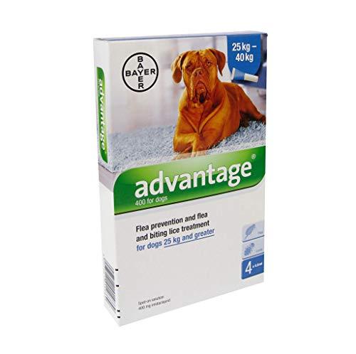 ADVANTAGE 400 Lösung Pipetten f.Hunde ab 25 kg 1X4 St