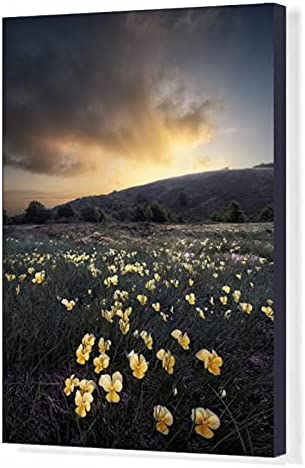 robertharding Manufacturer direct delivery 20x16 Canvas Max 77% OFF Print of Violet a Sunrise Over Yellow