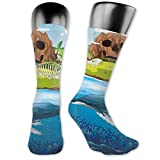 Photo de Soft Mid Calf Length Socks,Huge Whale Diving Into Ocean In Rainbow Hand Drawn Image Perfect For Teens,Women Men Socks Cotton Casual Funny Cute