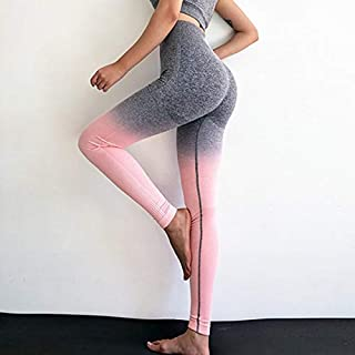 HUIJUNWENTI Kaminsky Women Seamless Leggings High Waist Workout Leggings Sporting Activewear Sweat Pants Jegging Ladies Fitness Leggings (Color : Peach Grey 1111a, Size : L)