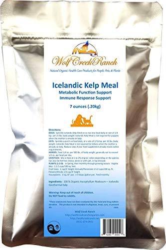 Wolf Creek Ranch Icelandic Kelp Meal - Loaded with Nutrients That Support Your Livestock Or Pet & A Natural Seaweed Fertilizer for Plants, 7 oz. Bag