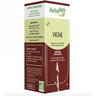Vigne vierge bourgeon Bio - Articulations et tendons 50 ml - Herbalgem