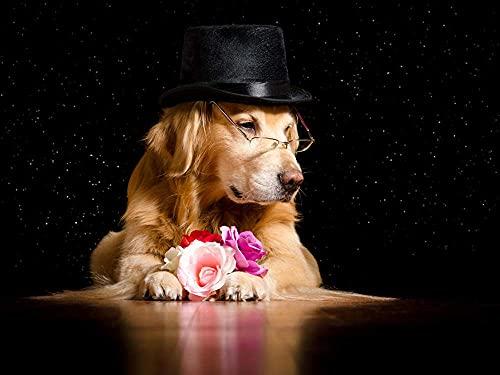 5D DIY pintura de diamante bordado dibujo-Golden Retriever perro sombrero rosas gafas animal -40 x 50 pulgadas costura regalo completo mosaico punto de cruz decoración del hogar