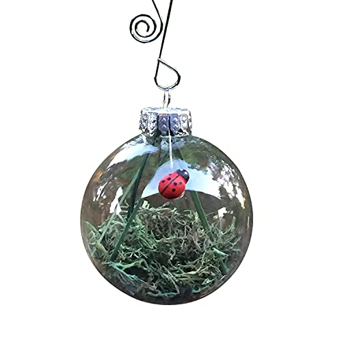 Lucky Ladybug Christmas or Year Round Habitat Glass Globe Ornament and Lady Bug Quote Card Gift...