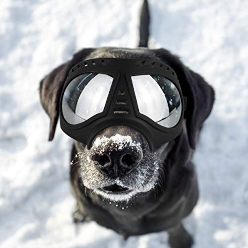 PETLESO Dog Goggles- Large Breed Dog Goggles Eye Protection Sunglasses for Outdoor Driving Cycling, Black