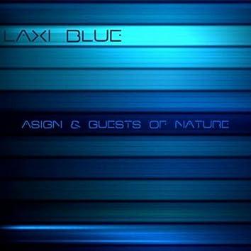 Laxi Blue