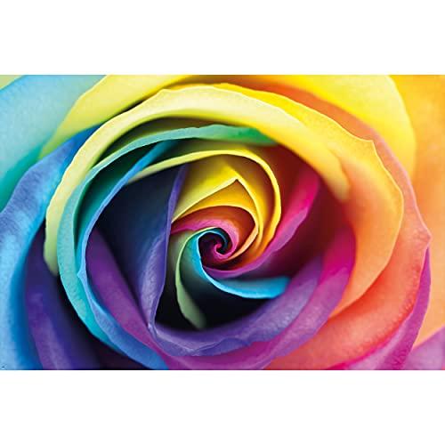 GREAT ART Fototapete – Regenbogen Rose – Wandbild Dekoration Blumen Liebe Pflanzen Romantik Natur Flowers Regenbogenfarben Rosenblüten Knospe Foto-Tapete Wandtapete Fotoposter (210 x 140 cm)