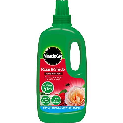 Miracle-Gro - Comida para Plantas